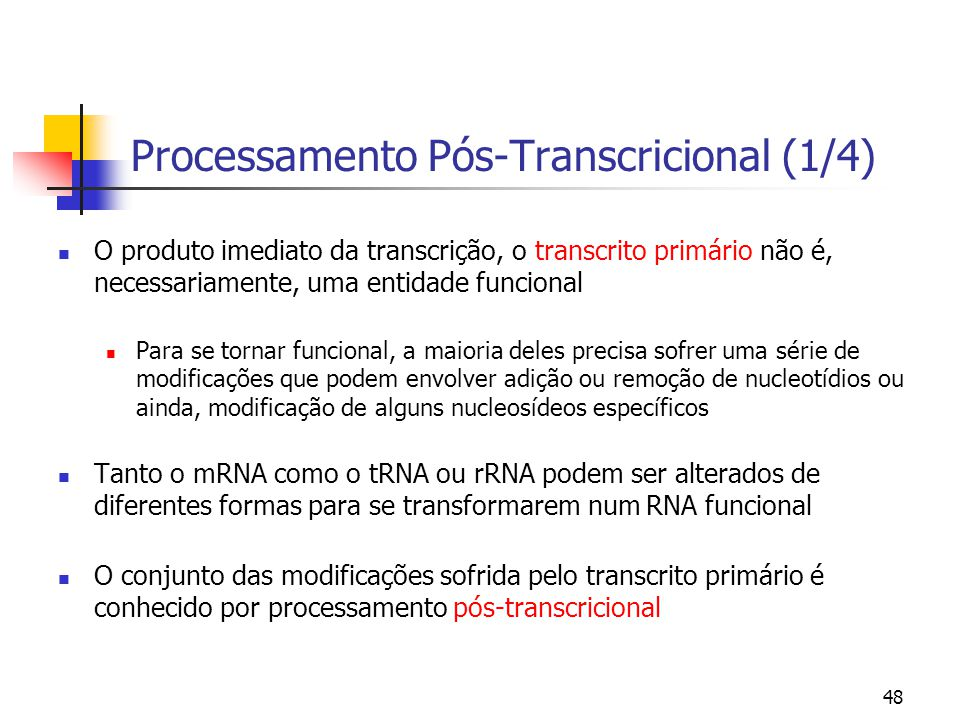 Processamento Pós-Transcricional (1/4)