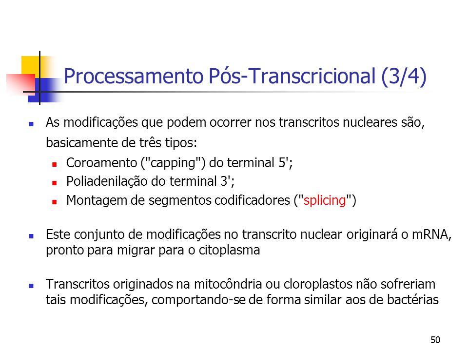 Processamento Pós-Transcricional (3/4)