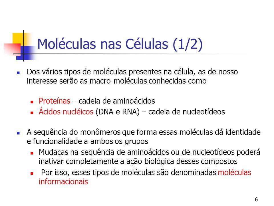 Moléculas nas Células (1/2)
