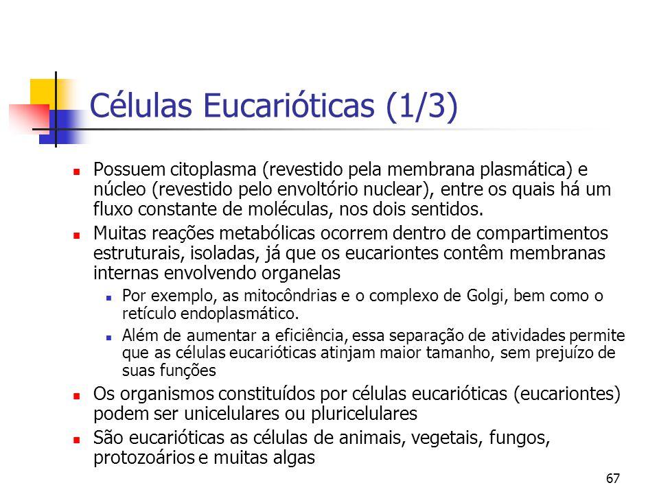 Células Eucarióticas (1/3)