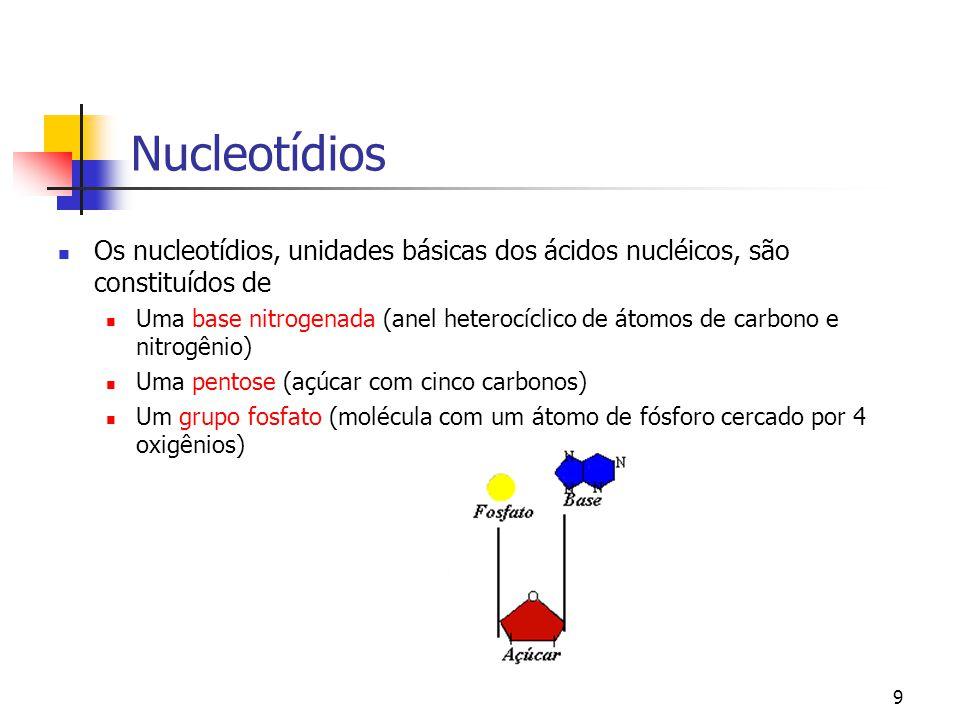 Nucleotídios Os nucleotídios, unidades básicas dos ácidos nucléicos, são constituídos de.