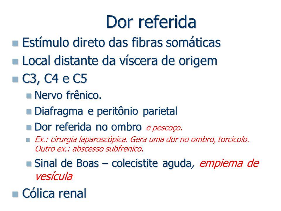 Dor referida Estímulo direto das fibras somáticas
