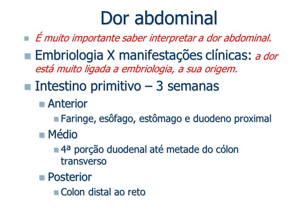 Dor abdominal É muito importante saber interpretar a dor abdominal.