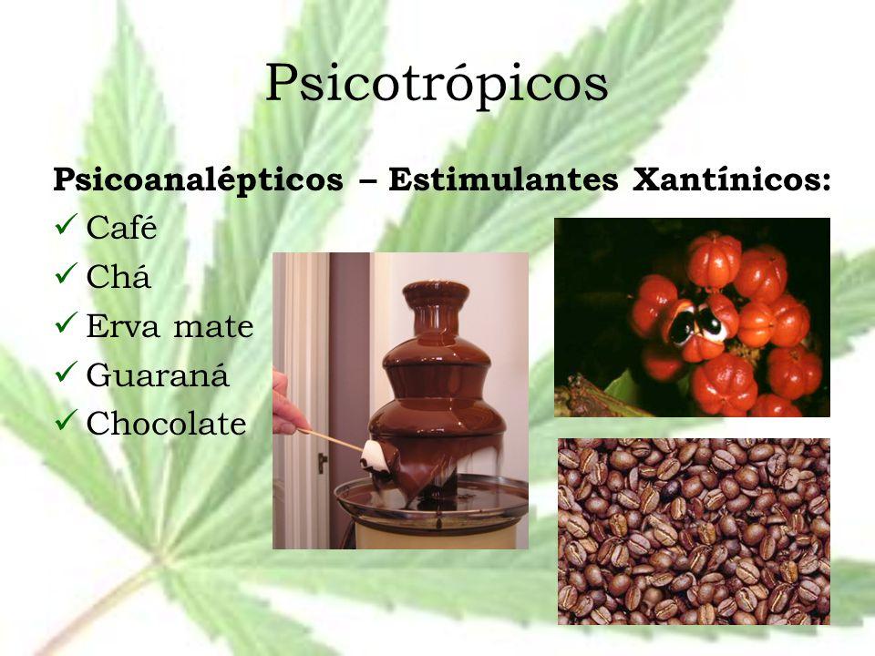 Psicotrópicos Psicoanalépticos – Estimulantes Xantínicos: Café Chá