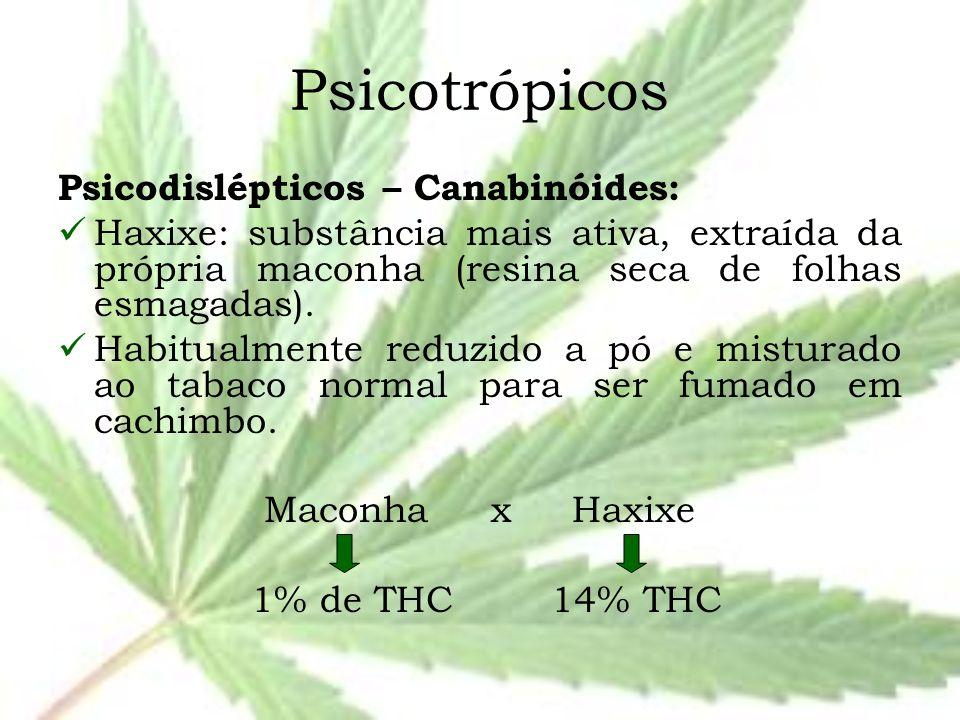 Psicotrópicos Psicodislépticos – Canabinóides: