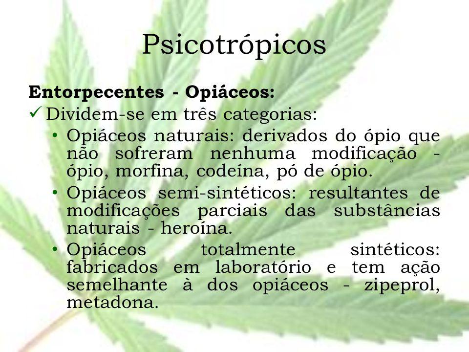 Psicotrópicos Entorpecentes - Opiáceos: Dividem-se em três categorias: