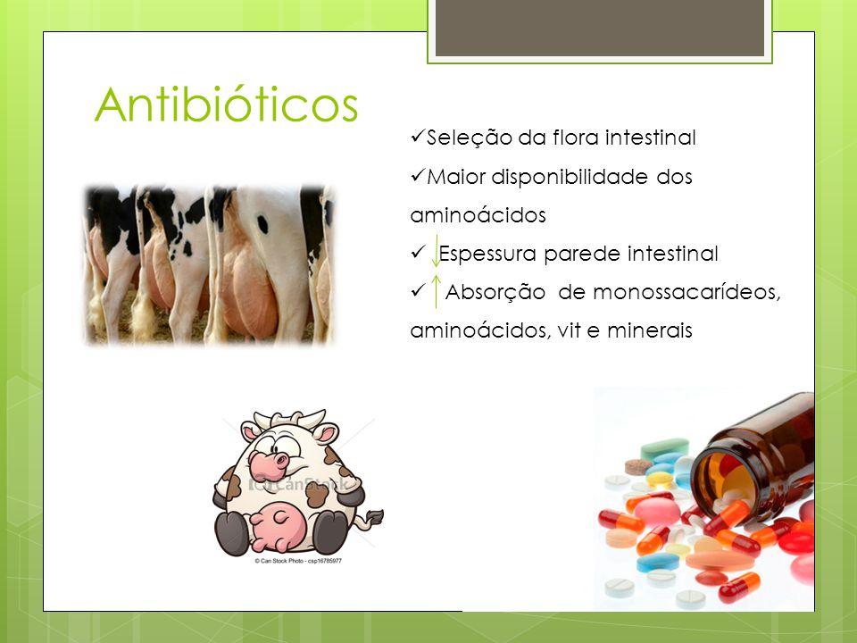 Antibióticos Seleção da flora intestinal