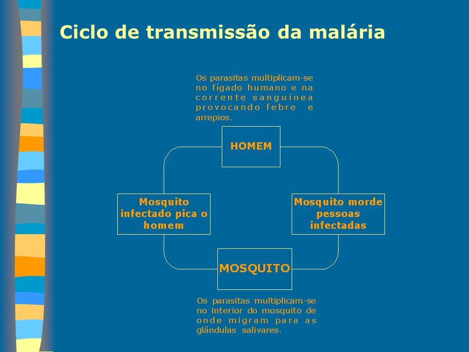 Ciclo de transmissão da malária