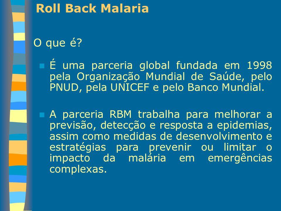 Roll Back Malaria O que é