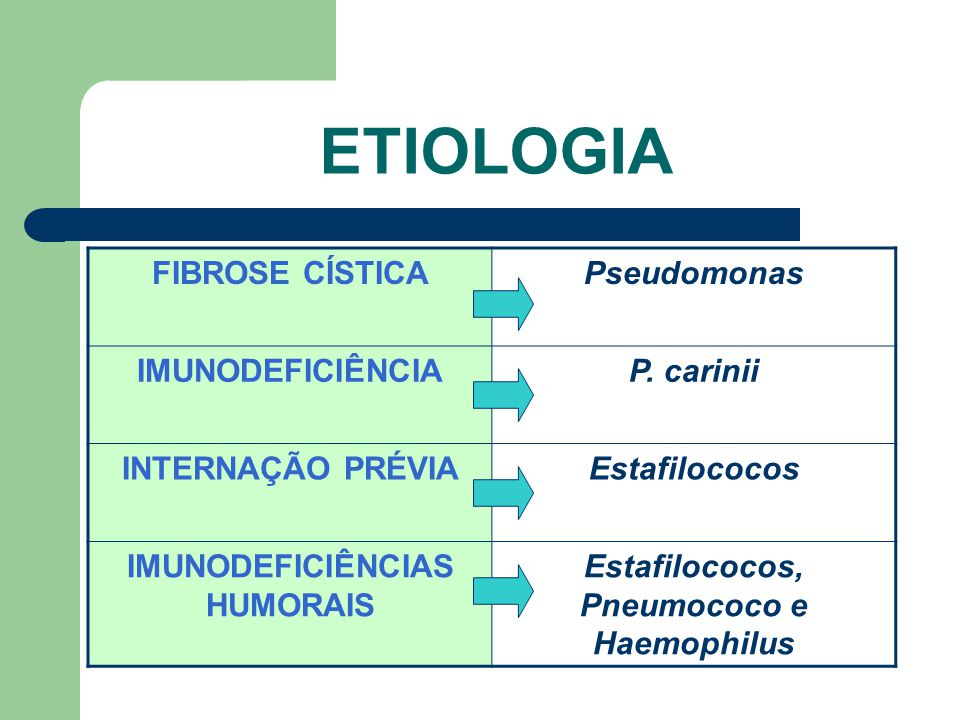 IMUNODEFICIÊNCIAS HUMORAIS Estafilococos, Pneumococo e Haemophilus