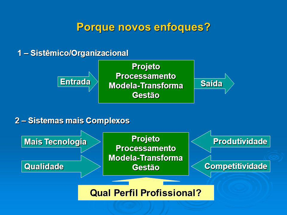 1 – Sistêmico/Organizacional