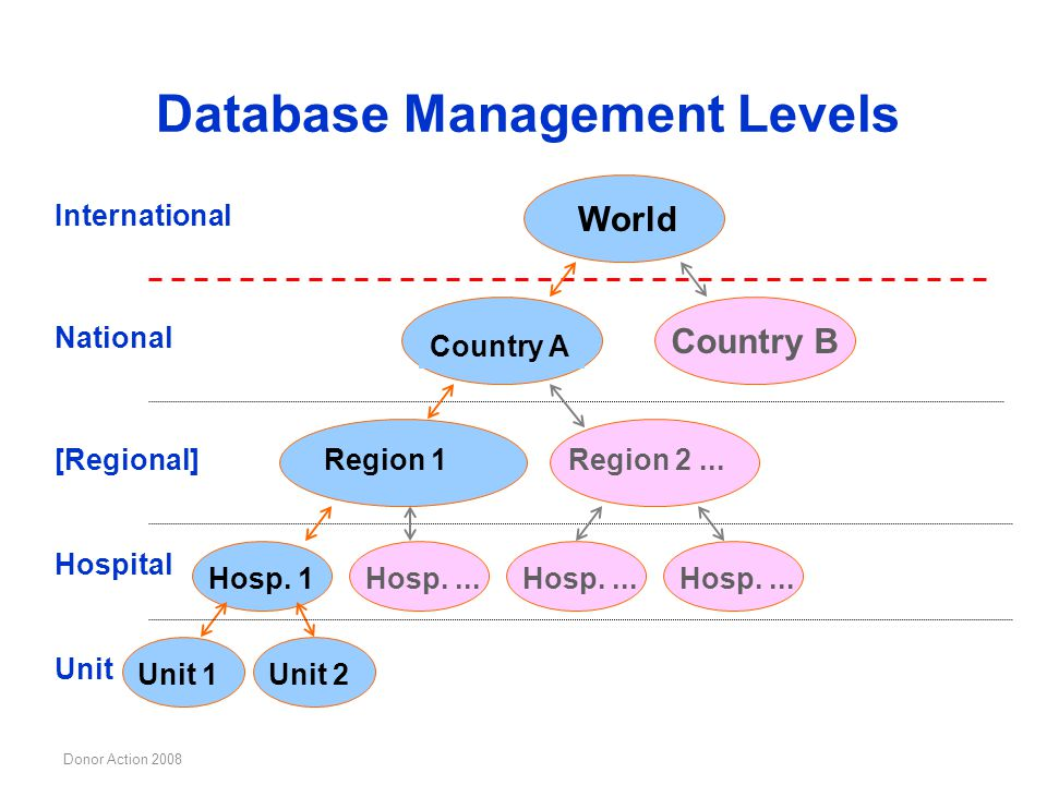 Database Management Levels