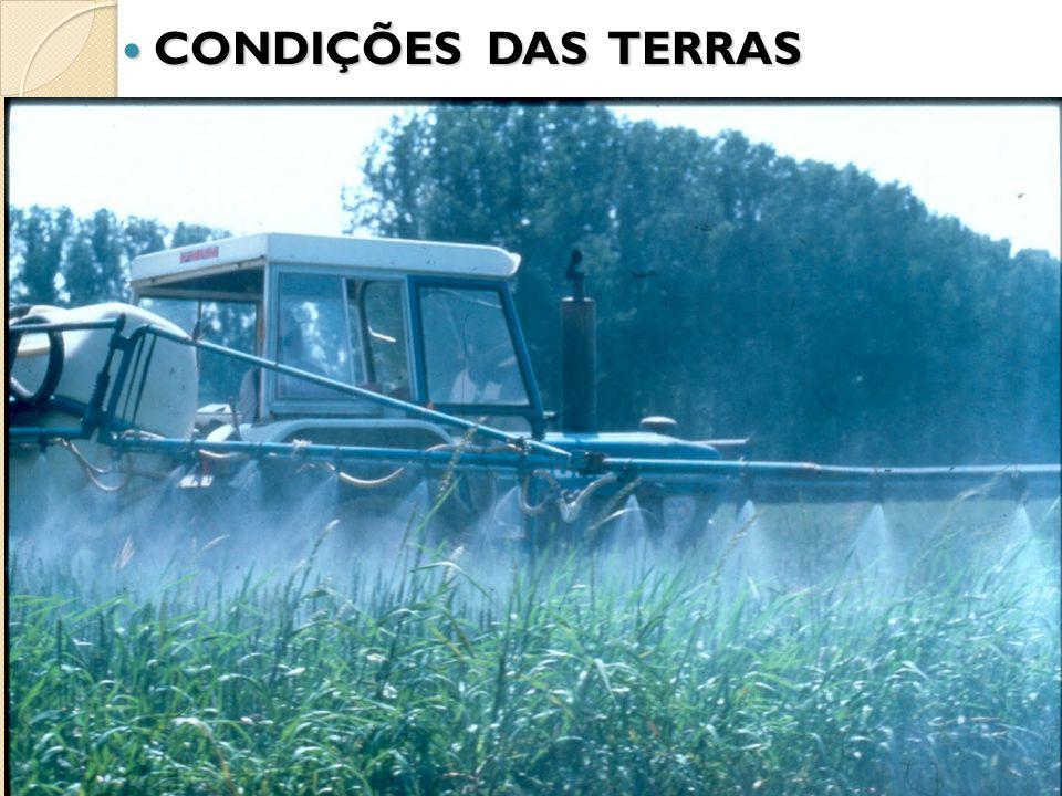 CONDIÇÕES DAS TERRAS