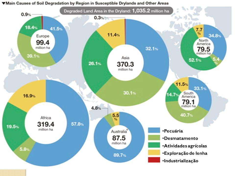 Pecuária Desmatamento Atividades agrícolas Exploração de lenha Industrialização
