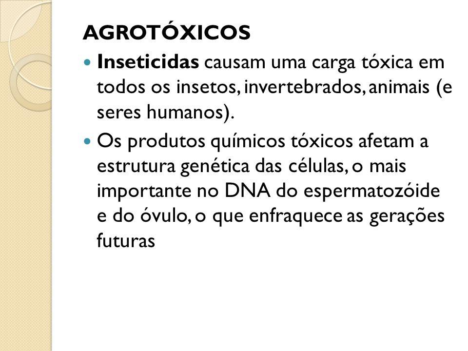AGROTÓXICOS Inseticidas causam uma carga tóxica em todos os insetos, invertebrados, animais (e seres humanos).