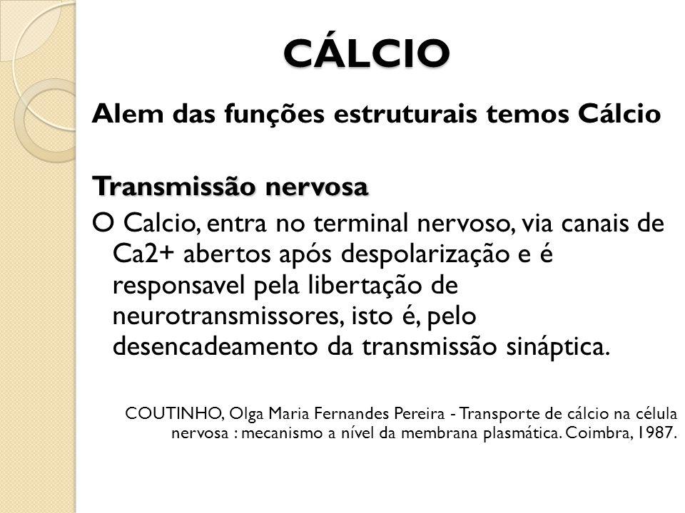 CÁLCIO Alem das funções estruturais temos Cálcio Transmissão nervosa