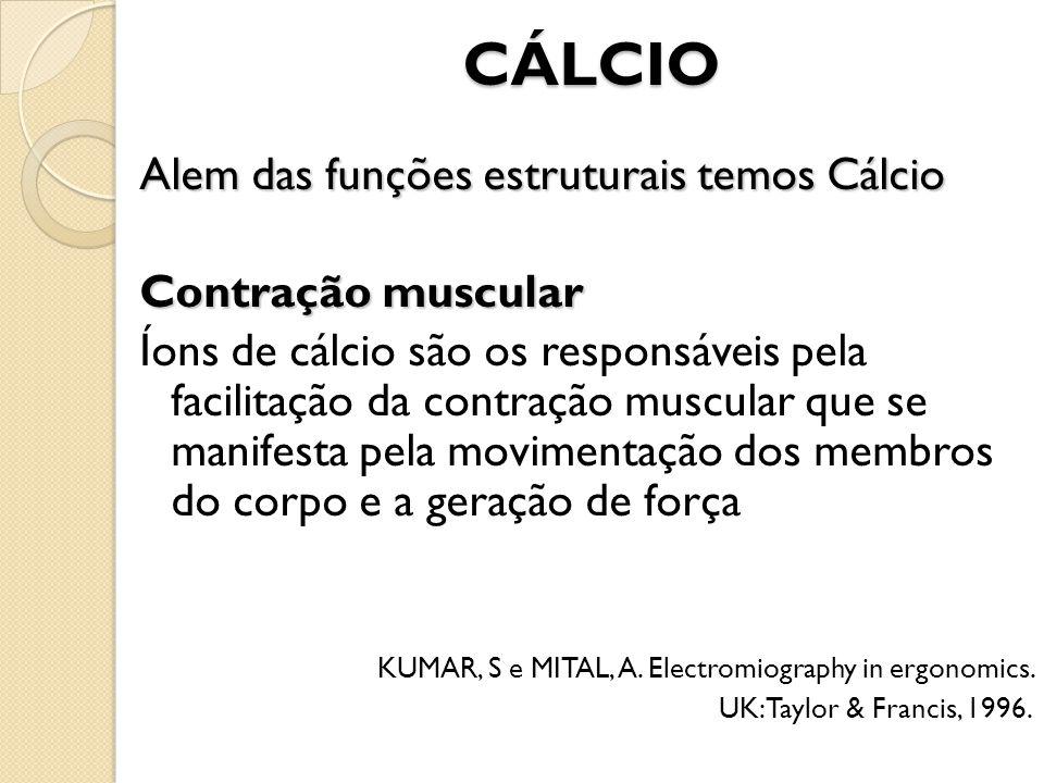 CÁLCIO Alem das funções estruturais temos Cálcio Contração muscular