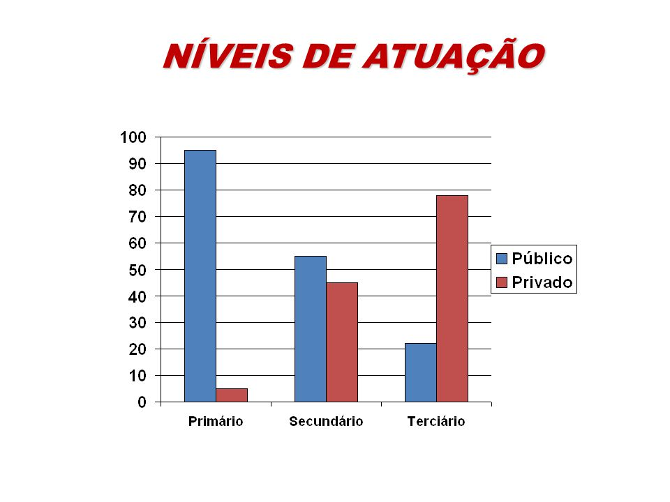 NÍVEIS DE ATUAÇÃO