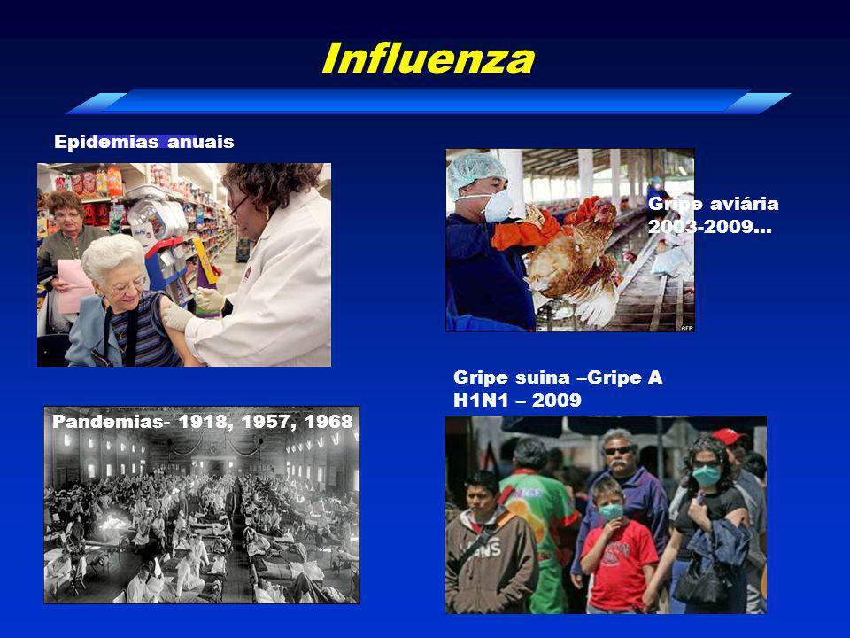 Influenza Epidemias anuais Gripe aviária 2003-2009…