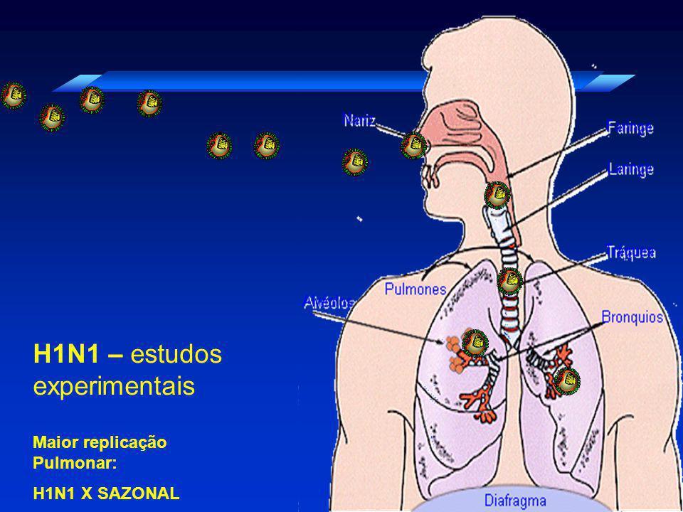 H1N1 – estudos experimentais