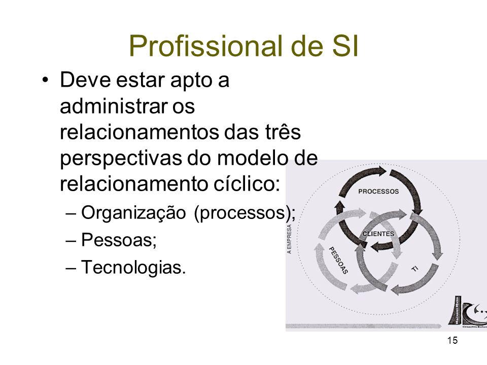Profissional de SI Deve estar apto a administrar os relacionamentos das três perspectivas do modelo de relacionamento cíclico: