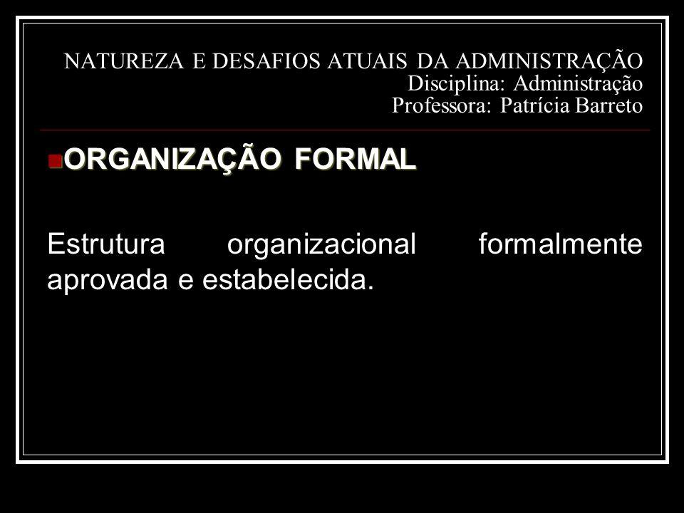 Estrutura organizacional formalmente aprovada e estabelecida.