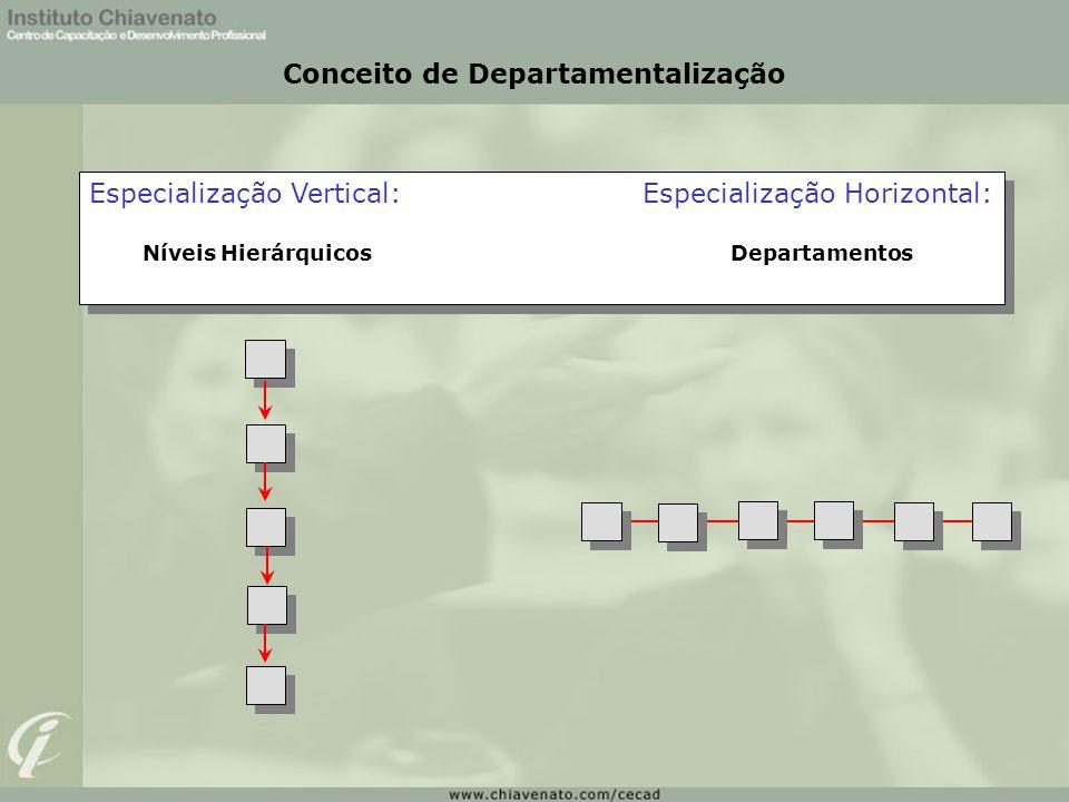 Conceito de Departamentalização