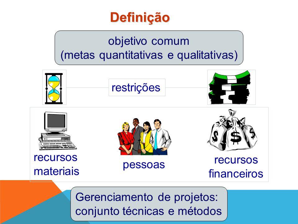 (metas quantitativas e qualitativas)