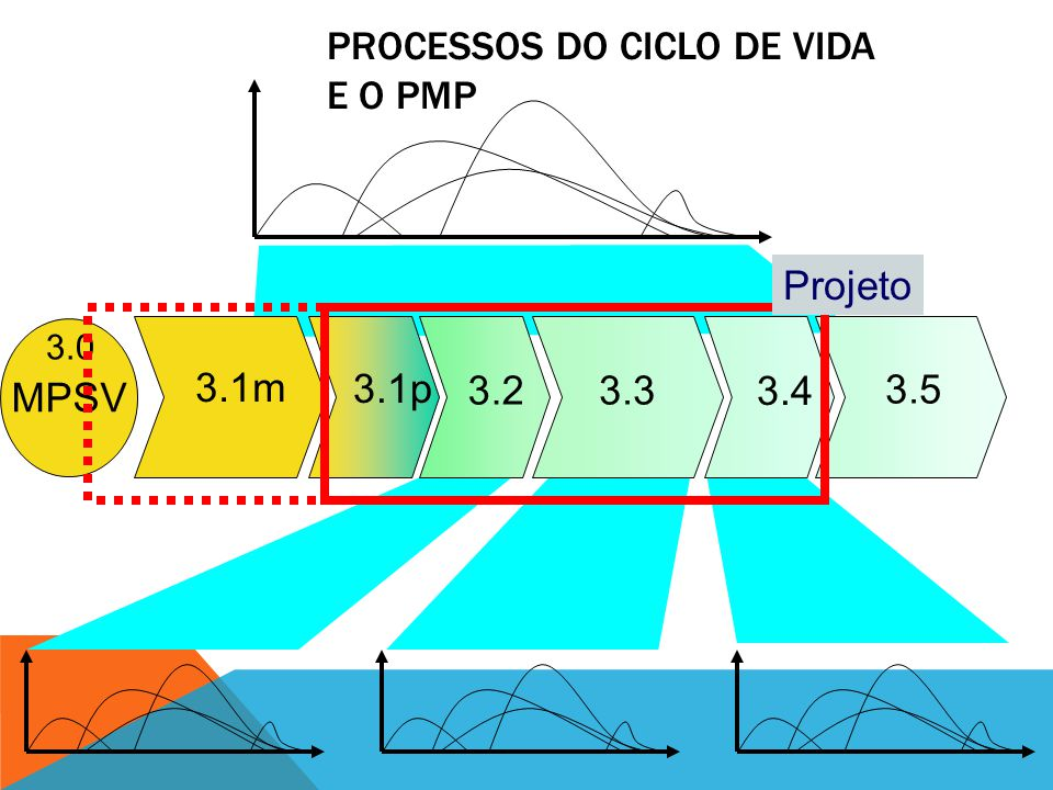 Processos do ciclo de vida e o PMP