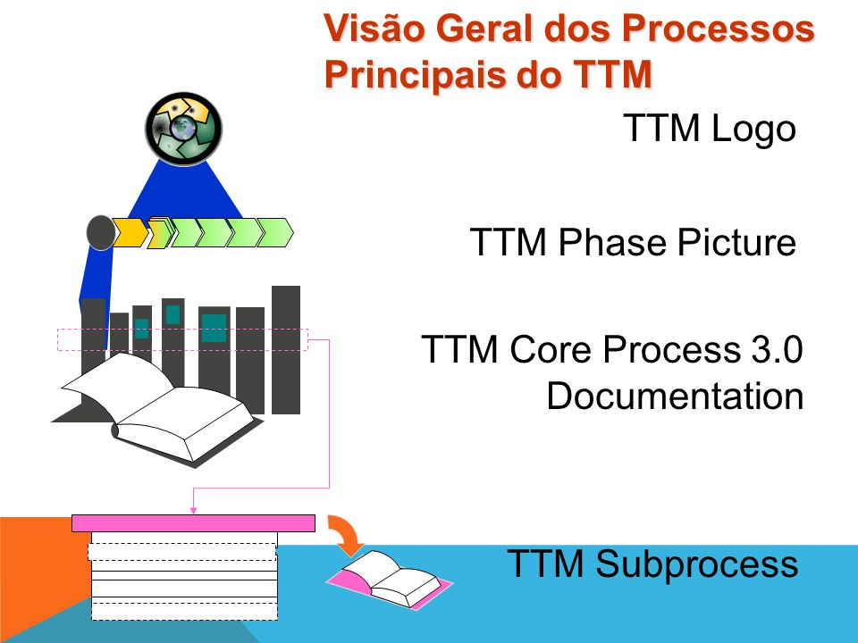 Visão Geral dos Processos Principais do TTM