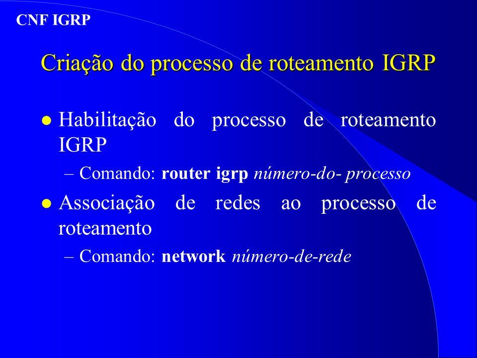 Criação do processo de roteamento IGRP