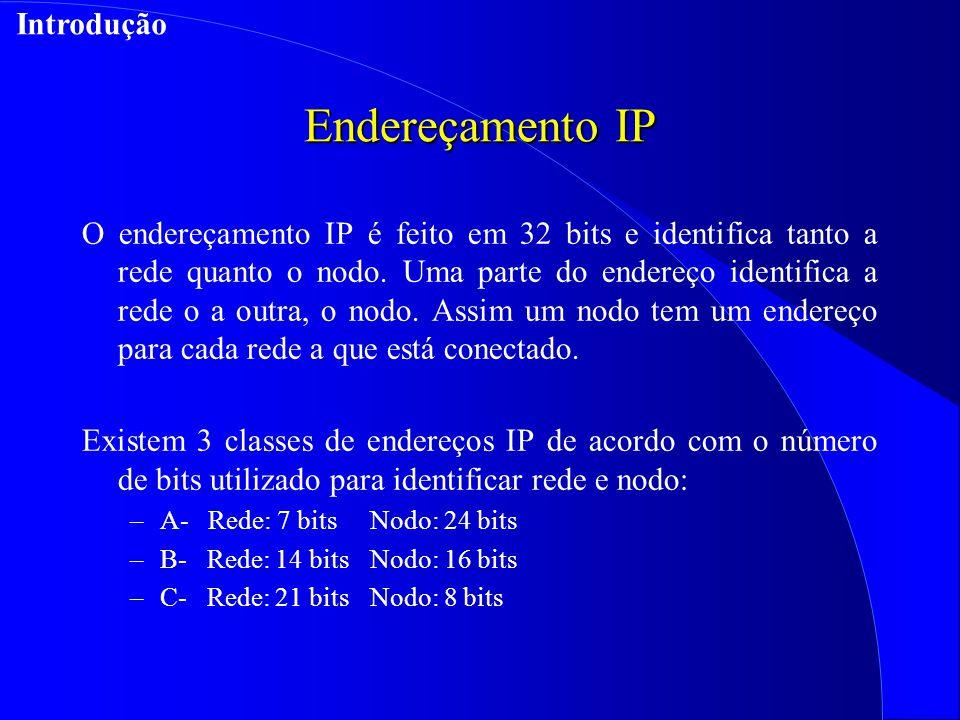 Endereçamento IP Introdução