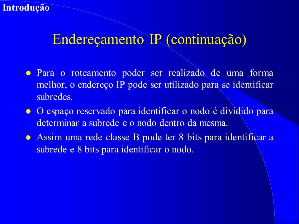 Endereçamento IP (continuação)