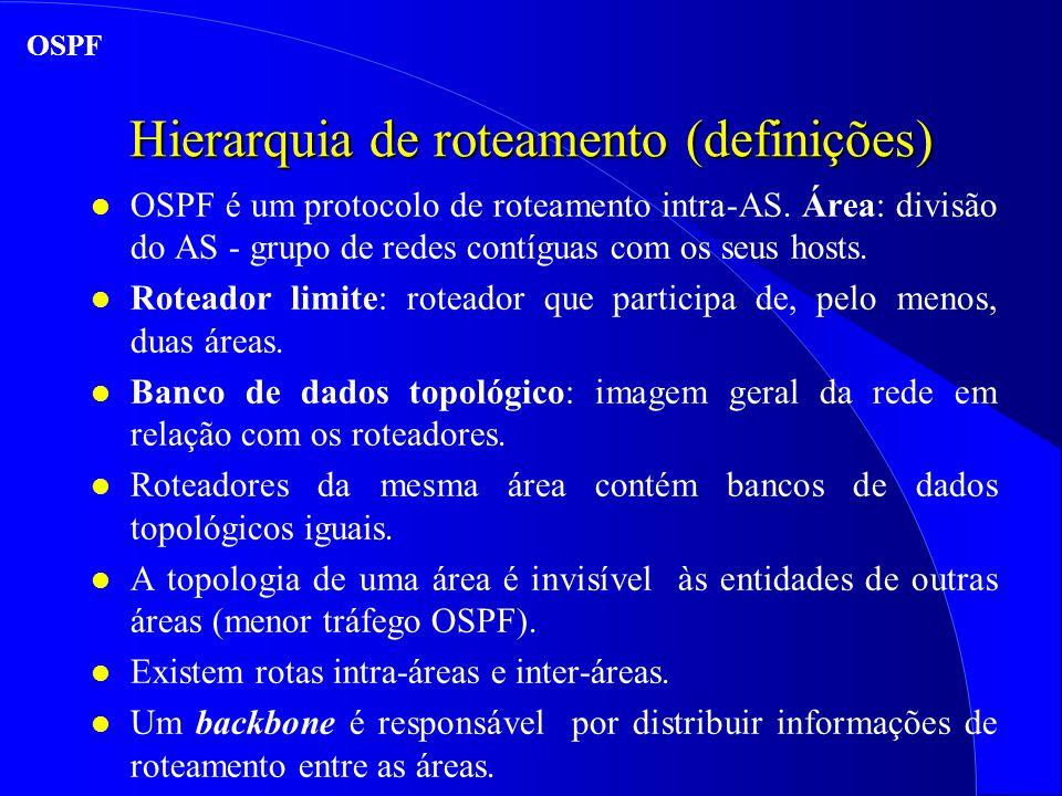 Hierarquia de roteamento (definições)