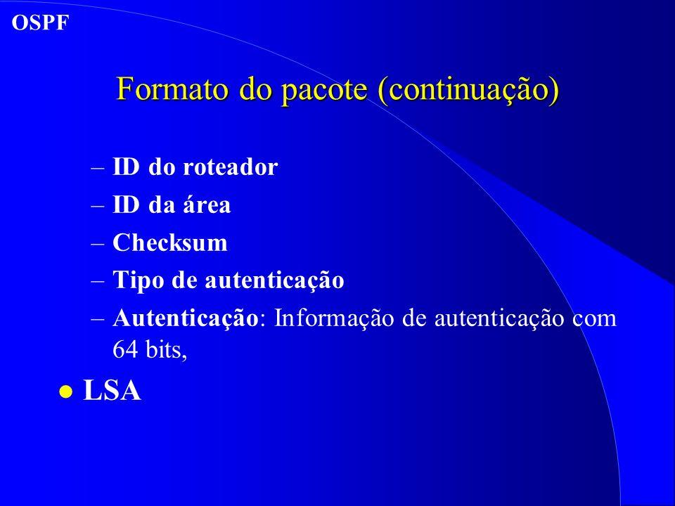 Formato do pacote (continuação)