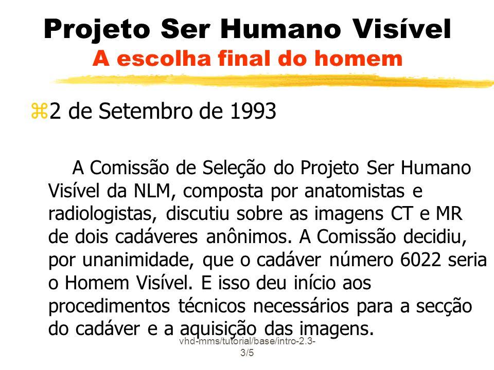 Projeto Ser Humano Visível A escolha final do homem