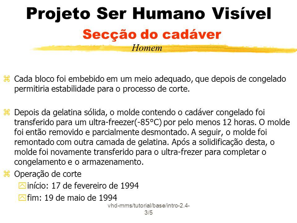 Projeto Ser Humano Visível Secção do cadáver
