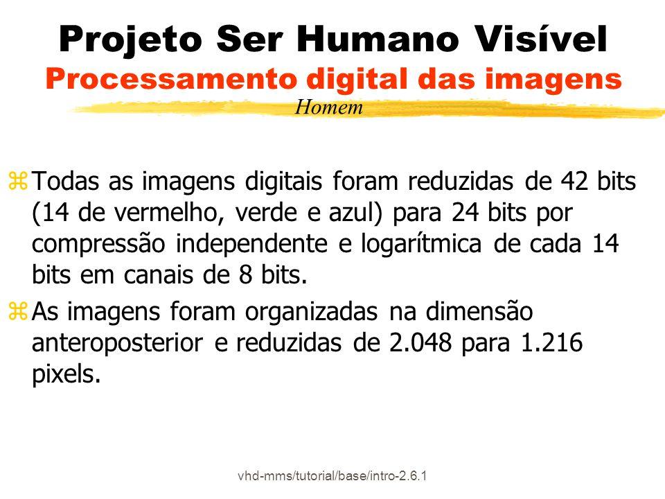 Projeto Ser Humano Visível Processamento digital das imagens