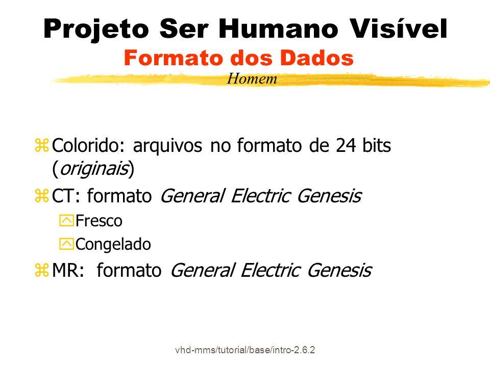 Projeto Ser Humano Visível Formato dos Dados