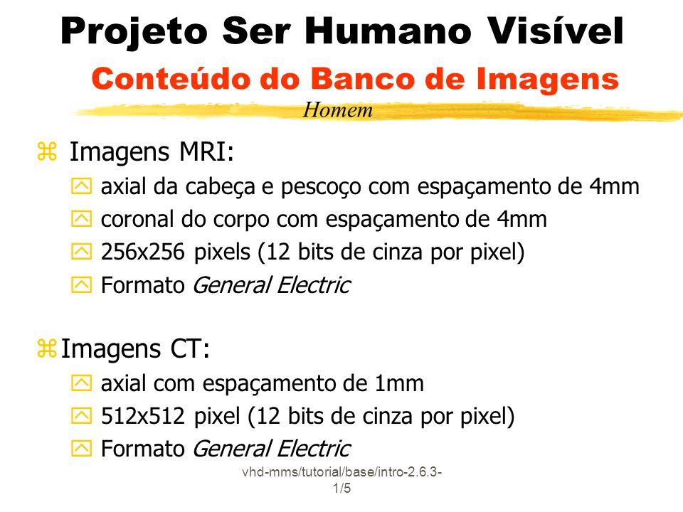 Projeto Ser Humano Visível Conteúdo do Banco de Imagens
