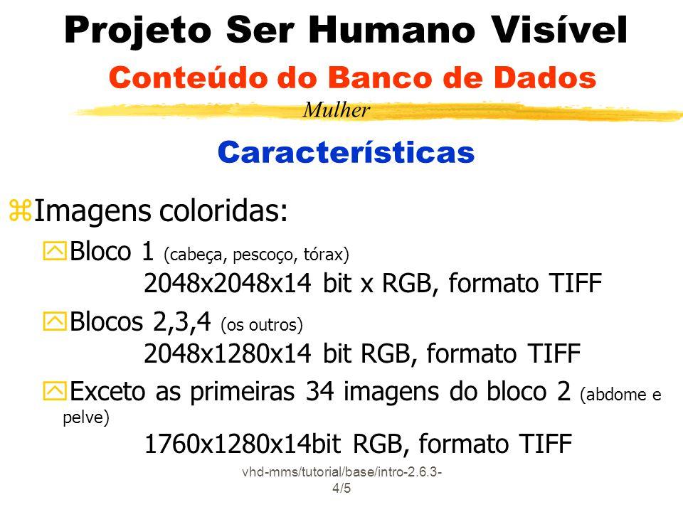 Projeto Ser Humano Visível Conteúdo do Banco de Dados Características