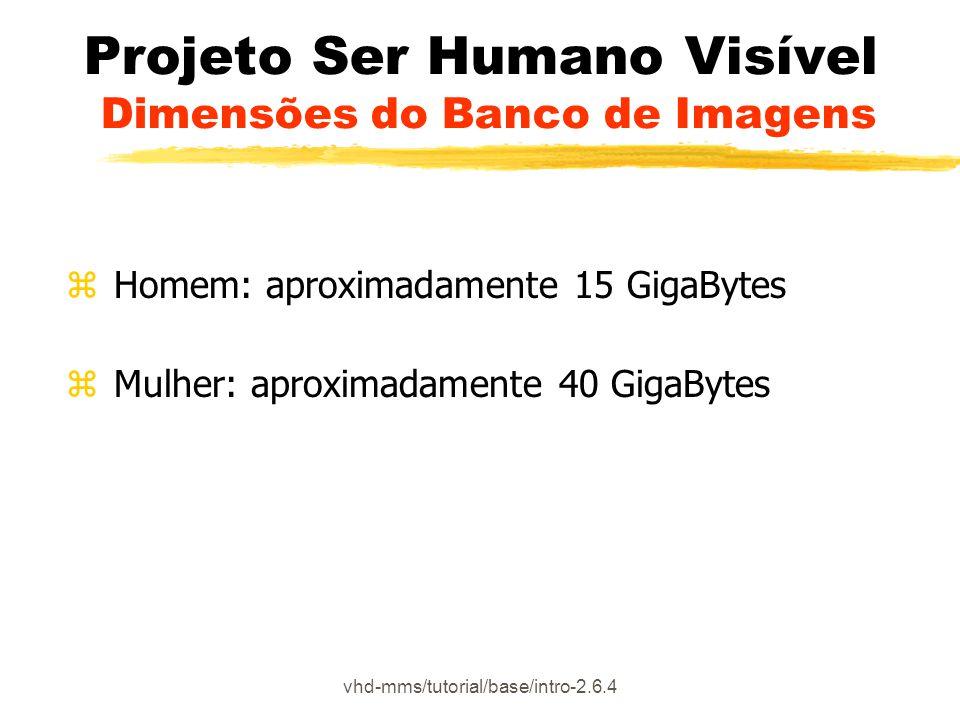 Projeto Ser Humano Visível Dimensões do Banco de Imagens