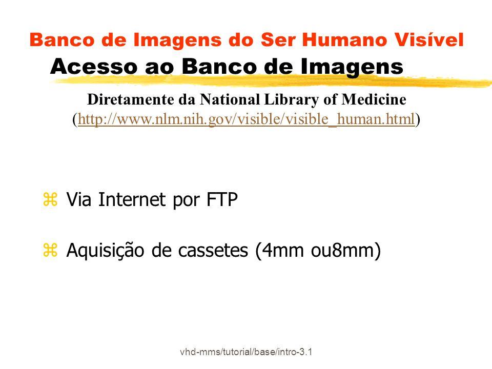 Banco de Imagens do Ser Humano Visível Acesso ao Banco de Imagens