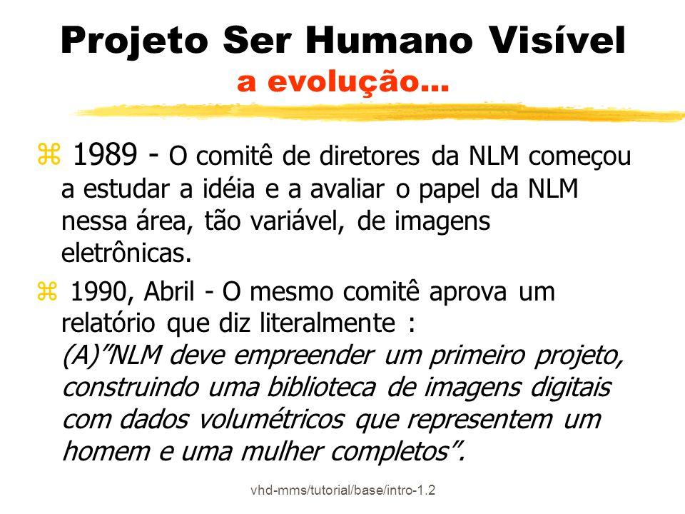 Projeto Ser Humano Visível a evolução...