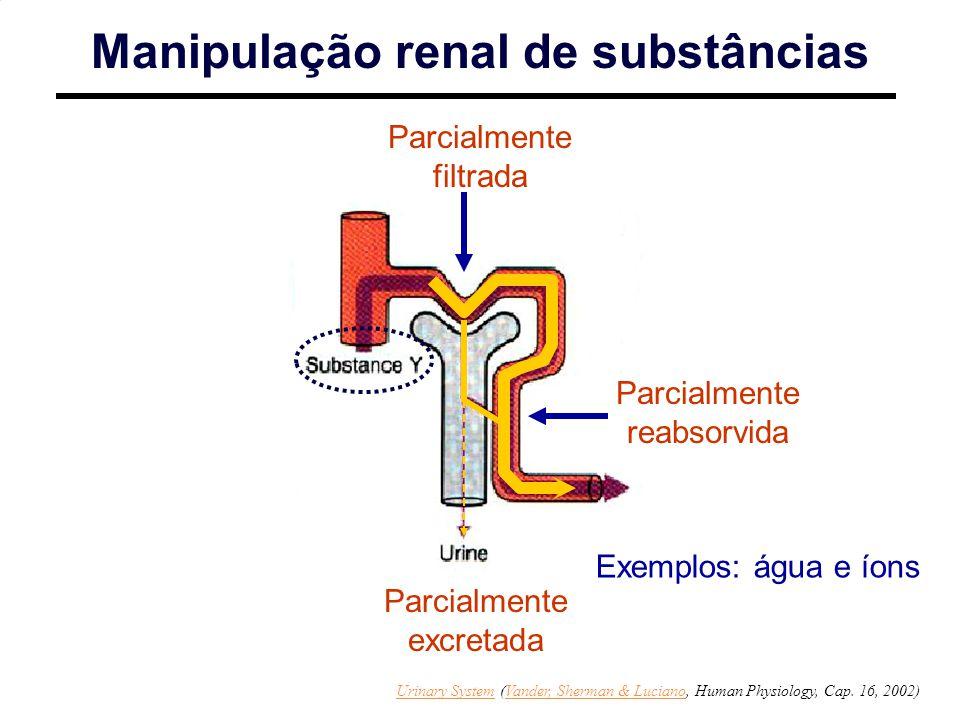 Manipulação renal de substâncias