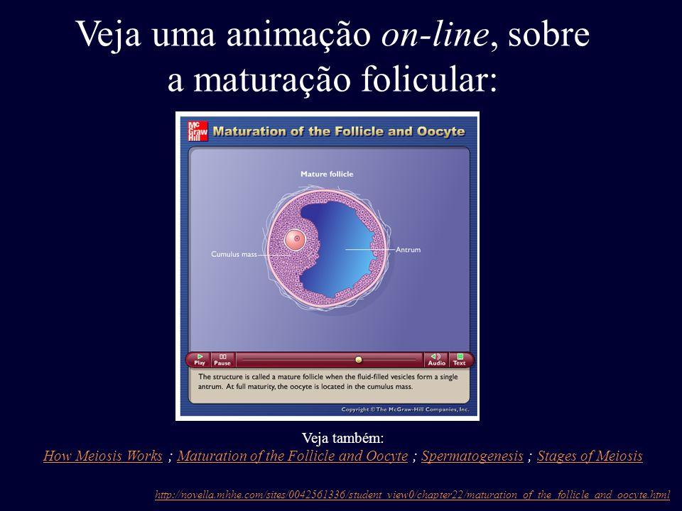 Veja uma animação on-line, sobre a maturação folicular: