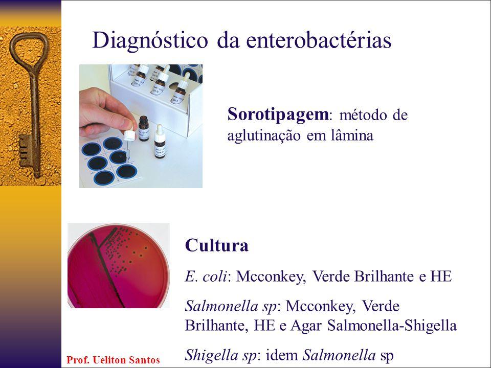 Diagnóstico da enterobactérias