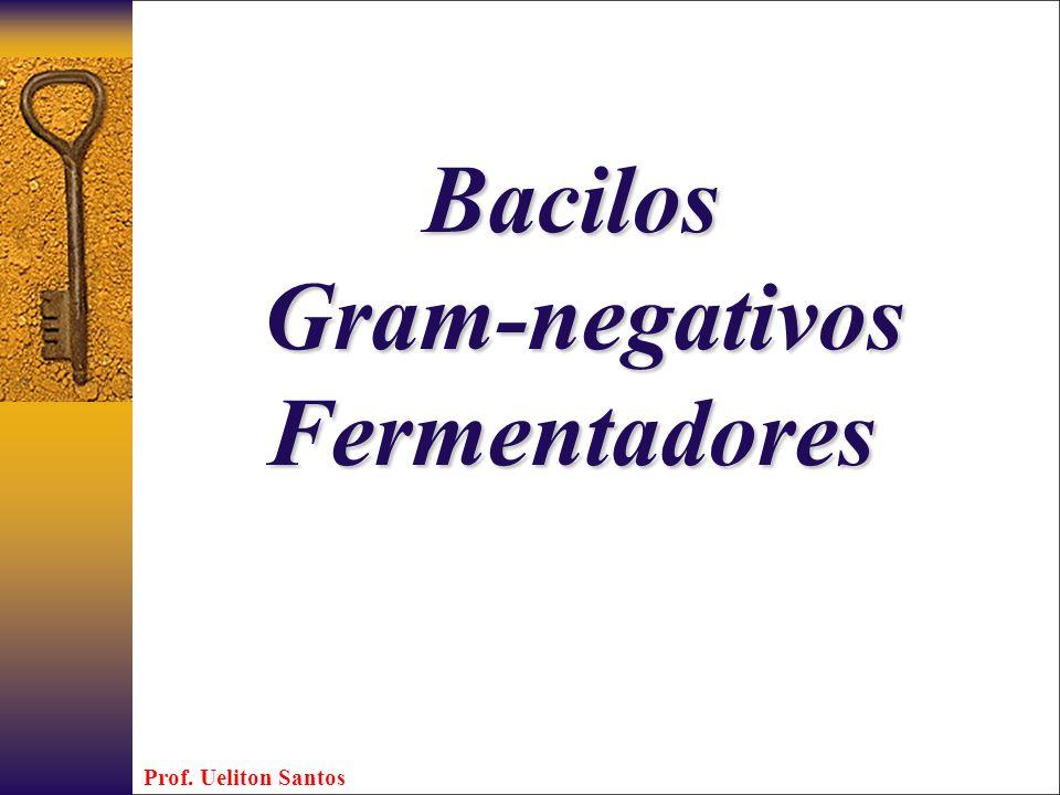 Bacilos Gram-negativos Fermentadores