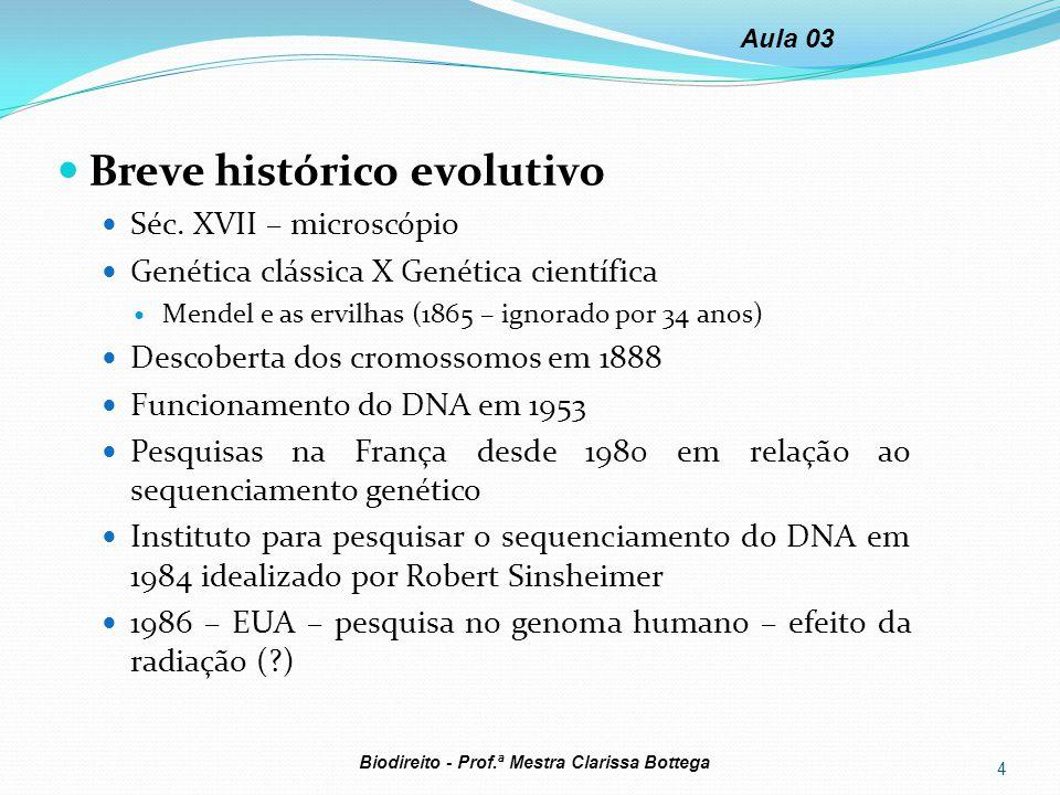 Breve histórico evolutivo