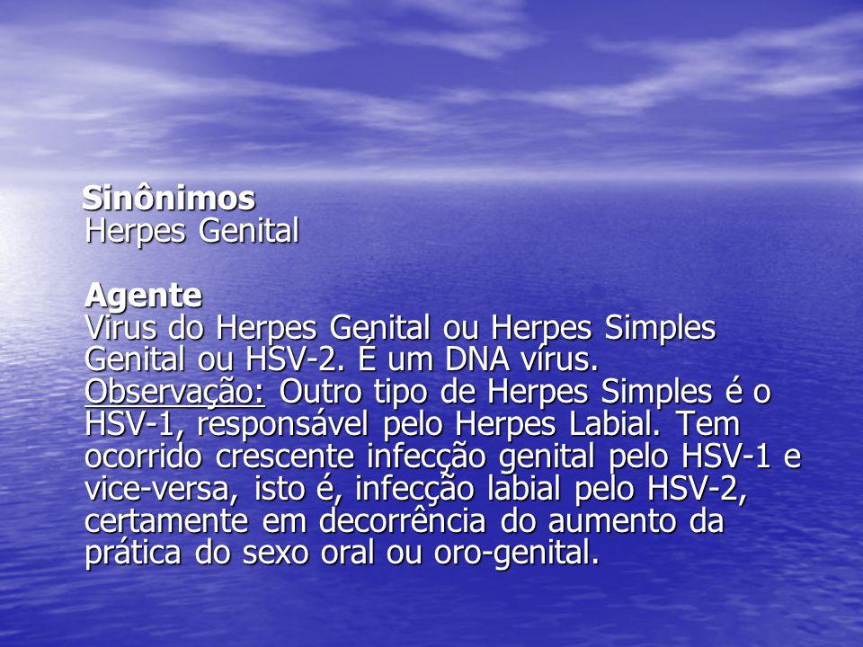 Sinônimos Herpes Genital Agente Virus do Herpes Genital ou Herpes Simples Genital ou HSV-2.